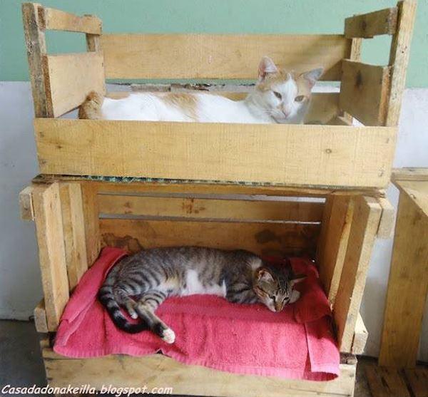 Meyve kasaından kedi yatağı
