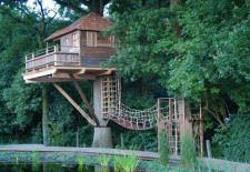 Ağaç ev için seçtiğiniz ağacın canlı bir yapı olduğunu unutmayınız