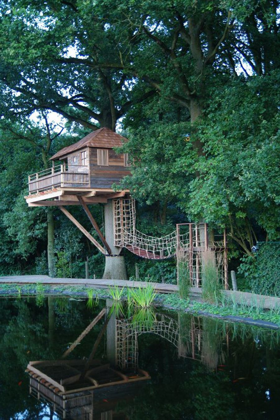 Please note that the tree you chose for the tree house is a living structure