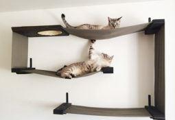 Kumaşlı kedi oyun alanları