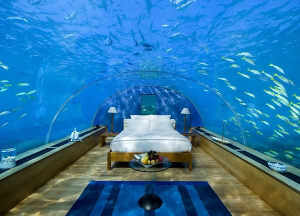 Aquarium interesting bedroom