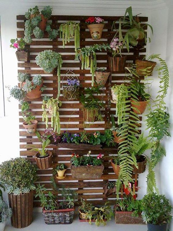 Flower Pot Covering Wall