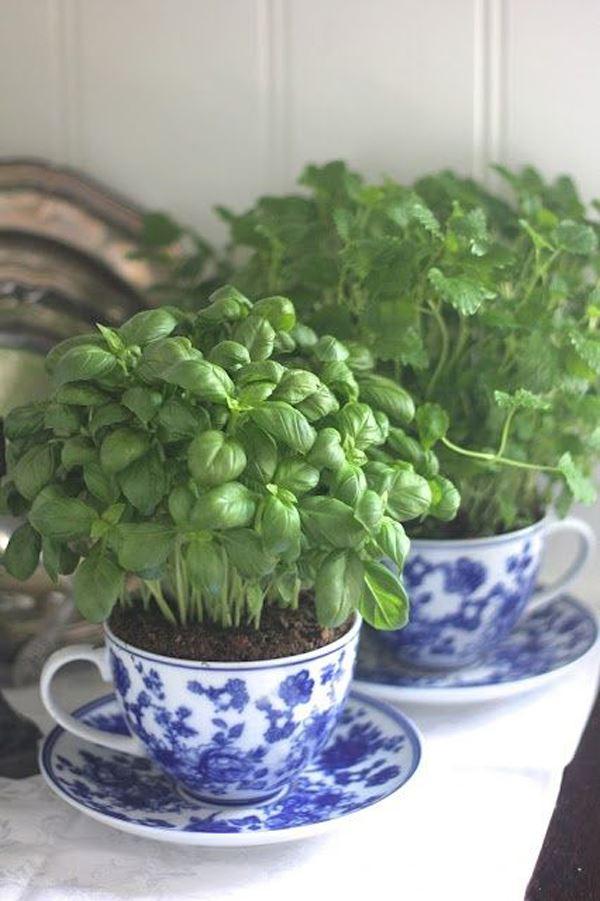 Cup flowerpot