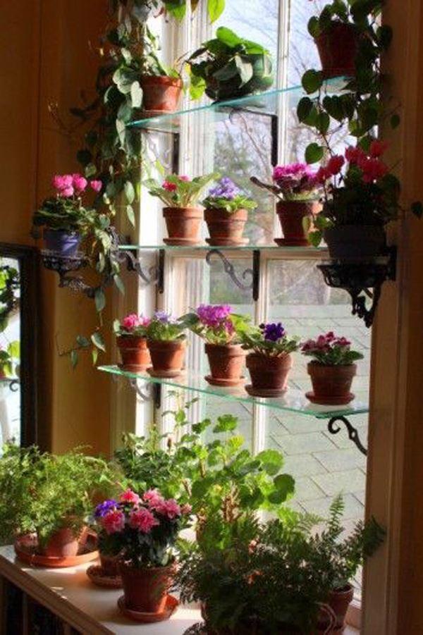 Window front shelf flowerpot