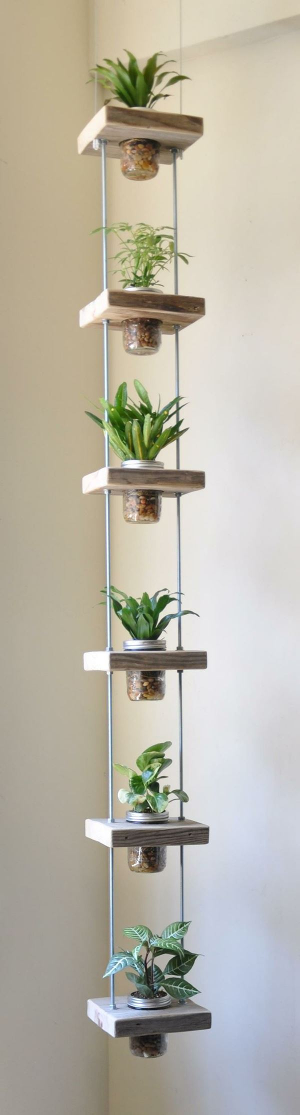 Flowerpot made of jar hanging from the ceiling